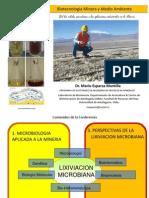 Bio Mineria