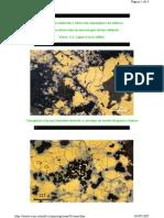 alteracion supergena-2.pdf