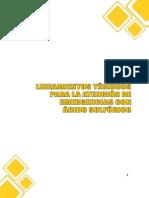 Lineamientos Técnicos AE Acido Sulfúrico FOPAE.pdf