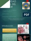 Angina Estable , protocolos diagnósticos