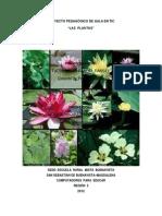 Proyectodeaulatic Lasplantas 121217141930 Phpapp01