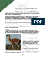 Animals on Aconcagua