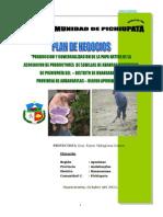 PLAN PICHIUPATA - HUANCARAMA.doc
