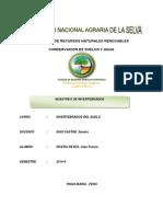 informe de invertebrados.pdf