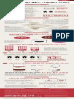DuPont Indian Laundry Study Infographic.pdf