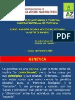 Génetica Teoria Mendeliana 2014.pptx