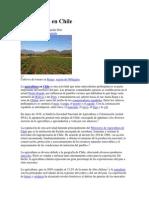 Agricultura en Chile.docx