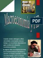 1.PIB(1)
