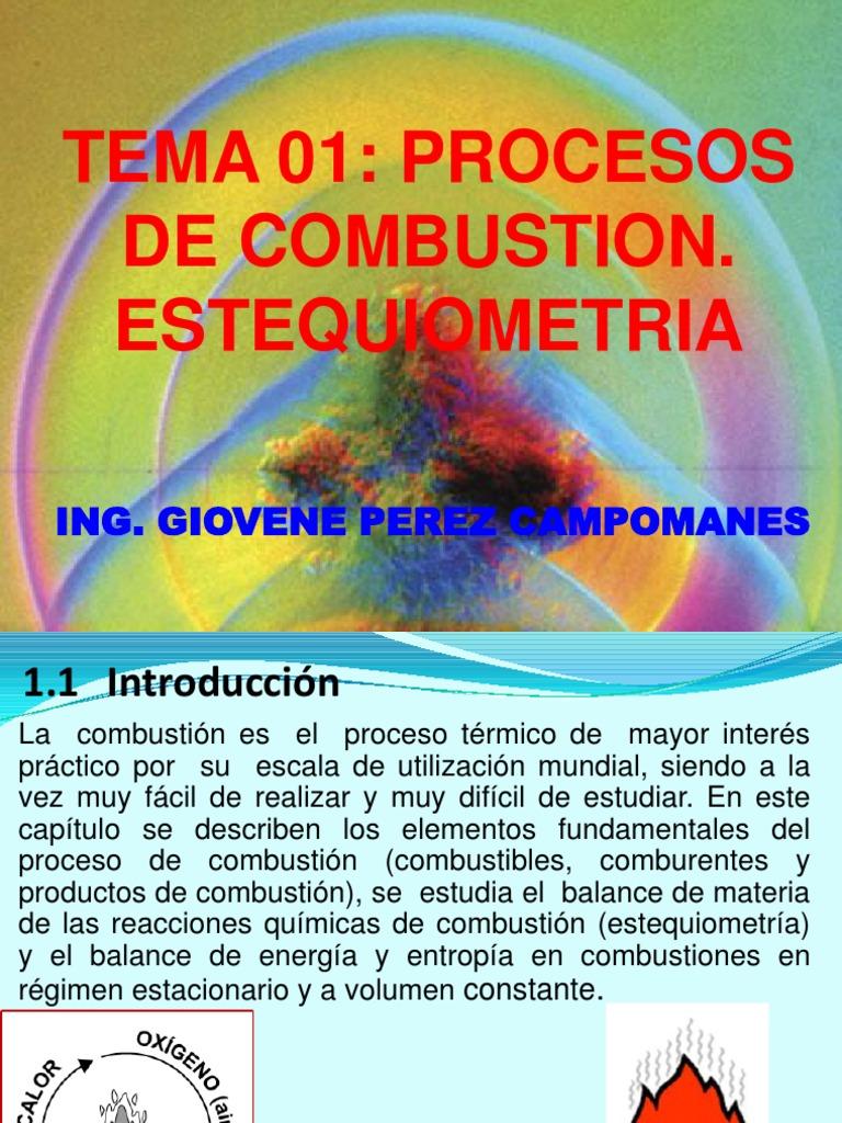 combustion estequiometrica