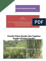 Budidaya Dan Pemanfaatan Bambu