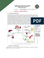 Receptores de Angiotensina.docx