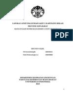 Laporan Audit Ipal