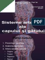 9. Curs - Arterele Capului Si Gatului