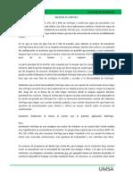 INFORME DE WINTOPO.docx