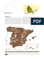 verderon_comun.pdf