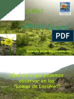 2009 quebradaverde