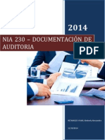 Trabajo Sobre Nias 230 - Documentación de Auditoria