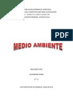 ACCION DEL SER HUMANO SOBRE EL AMBIENTE.docx