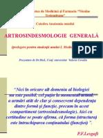 articulatile.anatomie