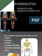 Expocision Esqueleto Axial