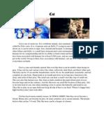 Cat rian Report Text