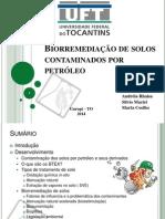 Ecologia - Biorremediação.pptx