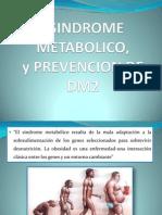 2012__SINDROME_METABOLICO_PRE_DIABETES.pdf