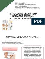 Sistema Nervioso NeuroPatologias
