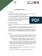 Análisis Textual_Pautas Generales