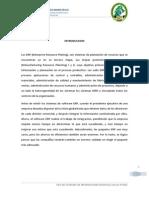 APLICACION DE SIG O SI EN LAS PYMES.docx