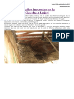 Proyecto Caballos Anexo
