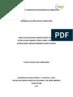 INFORME de LAS PRÁCTICAS de LABORATORIO Balance de Materia y Enrgía en Problemas Ambientales