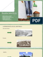 Demografia Social de Huancavelica