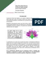 Polinización de las orquideas