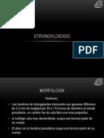 strongyloidisis