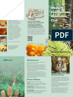 WPMC Brochure 2013