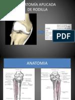 Anatomía Aplicada rodilla