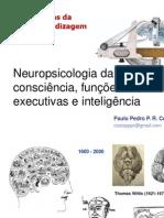 Consciência, funções executivas e inteligência