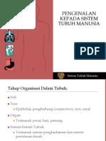Sistem Tubuh