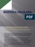 Biofizica Celulara Cretu Cristian