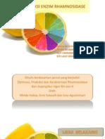 Optimasi Produksi Enzim Rhamnosidase