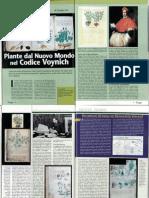 Articolo Fenix Voynich
