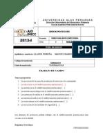 TRAB.ACAD. DEREC. PENITENCIARIO.doc