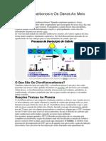 s Clorofluorcarbonos e Os Danos Ao Meio Ambiente.docx