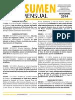 11 Resumen Noviembre 2014