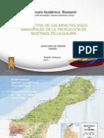 Prospectiva  de los impactos socio ambientales de la  producción de bioetanol en la guajira_Juan Carlos Sierra.ppt