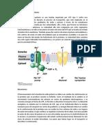 3_tema_2.pdf
