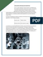 Mecánica Dentro Del Área de Mecatrónica Uni 3
