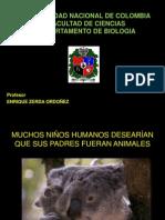 5)AGRESIVIDAD HUMANA2.pdf