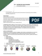 Clase 5 - Sistema de Salud Chileno